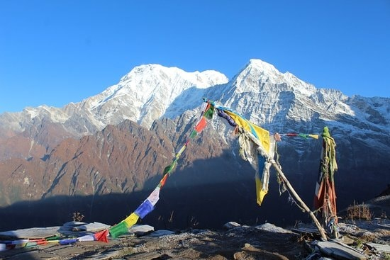 5 Facts About Mardi Himal Base Camp Trekking| ABC Region