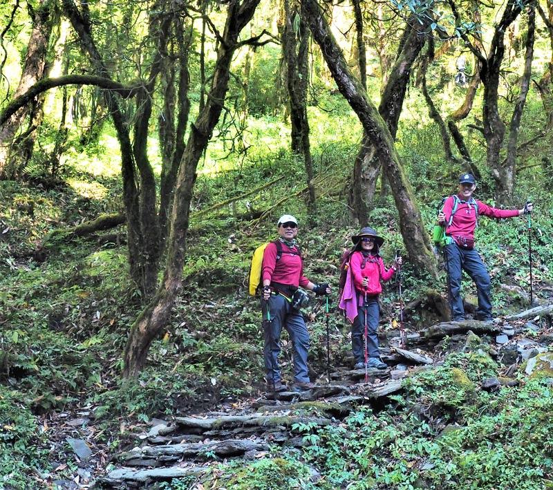 daman-hiking