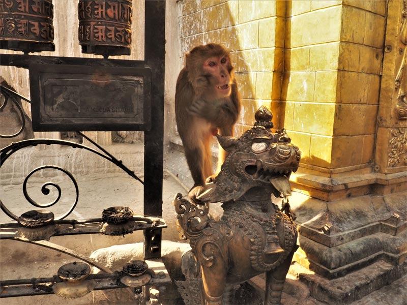 Kathmandu Changunarayan Dhulikhel Tour