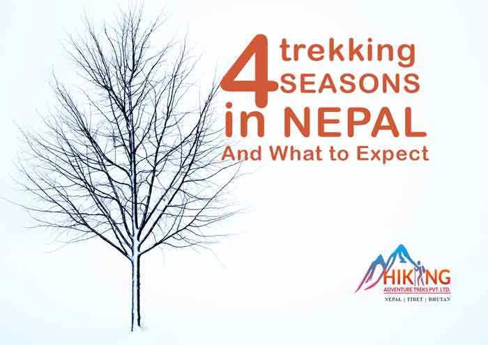 Trekking Seasons in Nepal – four amazing experiences